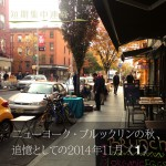 icon_Brooklyn01