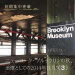 icon_Brooklyn03
